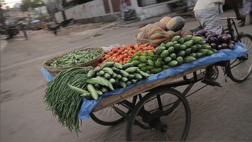 Transporting produce to market in Bangladesh