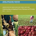 Improving Nutrition through Agriculture Technical Brief Series