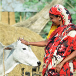 OneHealth approach gets attention in India