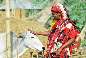 Photo credit: Akram Ali / CARE Bangladesh