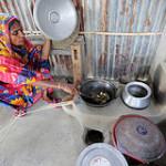 New Dietary Diversity Indicator for Women