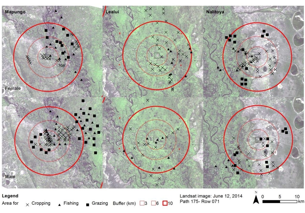 Map 1. Areas used for cropping, fishing and grazing activities indicated by women (upper) and men (bottom) in three communities of the Aquatic Agricultural Systems – Nutrition Sensitive Landscapes communities in Barotse-Zambia.