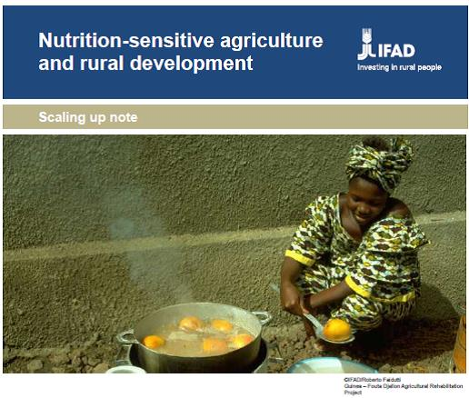 Scaling up nutrition actions, IFAD