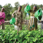 How Women Can Maximize the Nutrition and Health Benefits of Irrigation for All