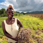 Does better agriculture mean better nutrition?