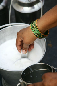 Urban dairy in Hyderabad India. (Photo credit: ILRI/S.Mann)