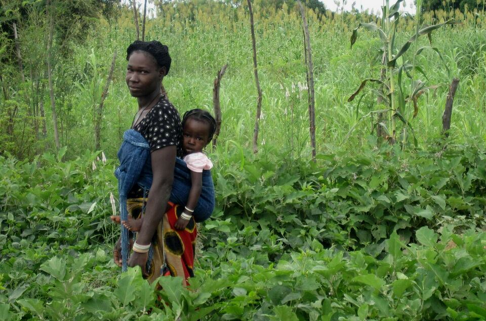 Realizing the potential of a homestead food production program