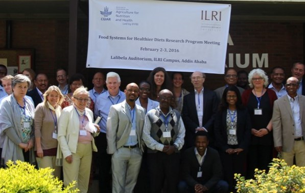 Food systems planning workshop: summary report