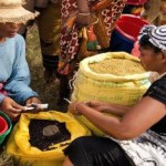 Upcoming webinar on nutrition diversity and resilience