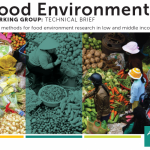 ANH Academy Launches Technical Brief on Food Environments