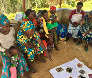 •Capturing Rwandan farming household's feedback on biofortified crops for an efficacy study (Photo credit: HarvestPlus)