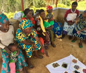 •Capturing Rwandan farming household's feedback on biofortified crops for an efficacy study (Photo credit: HarvestPlus)