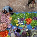 New Paper Explores Using Biodiversity Indicators to Shape Food System Recommendations