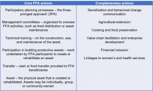 Actions of the WFP Food Assistance for Assets (FFA) program