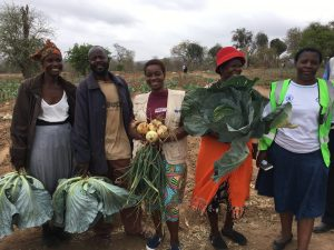 Women and men sell the study team vegetables from a WFP-supported community garden in Zimbabwe (Photo credit: WFP)