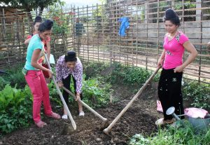 Young women practicing improved gardening techniques (Bioversity International/Jessica Raneri)
