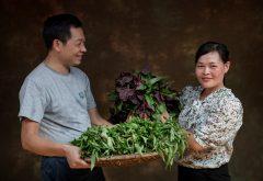 Video: Research Impact in Vietnam