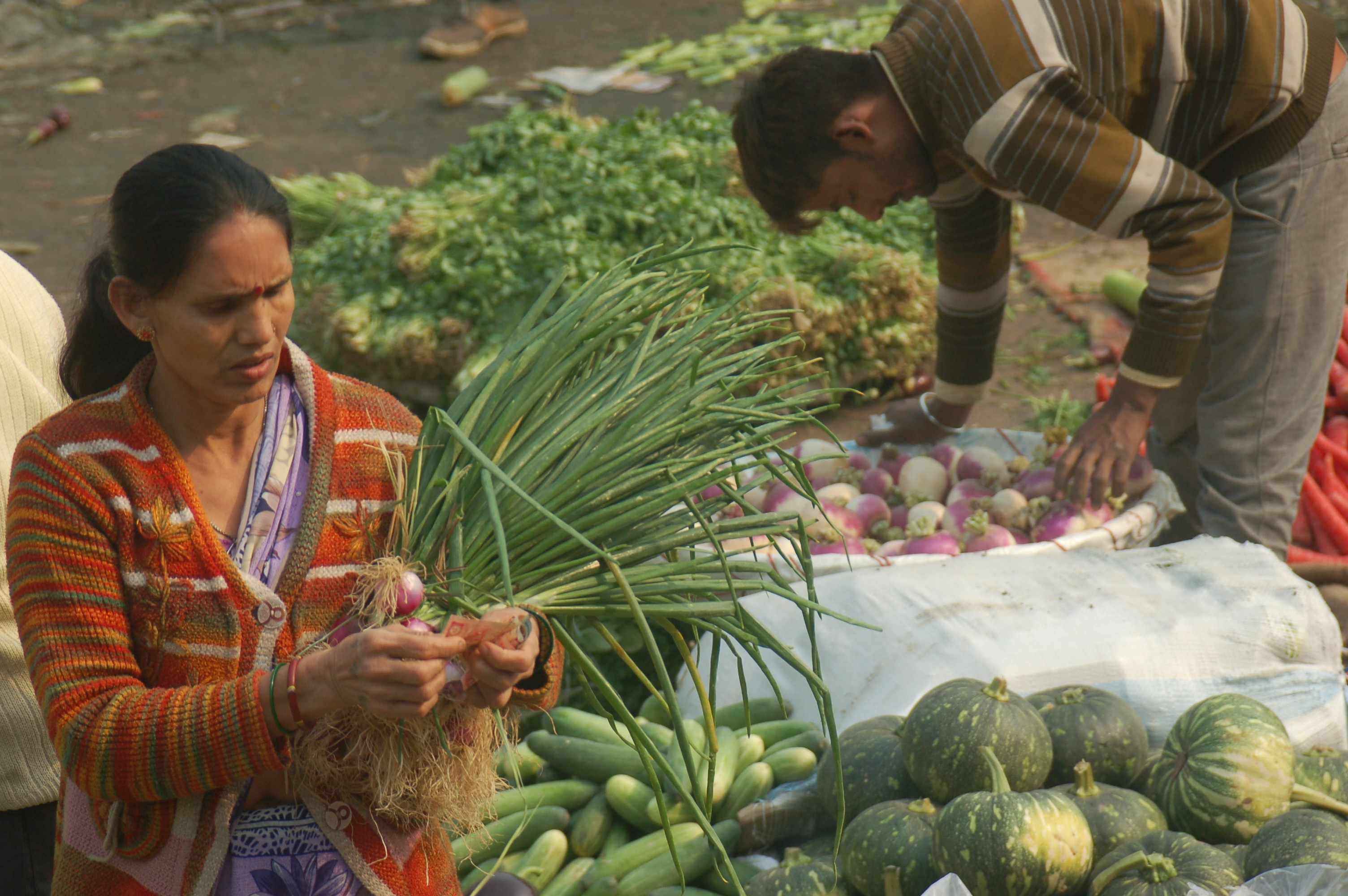 Developing and Sustaining Innovative Partnerships for Nutrition in India