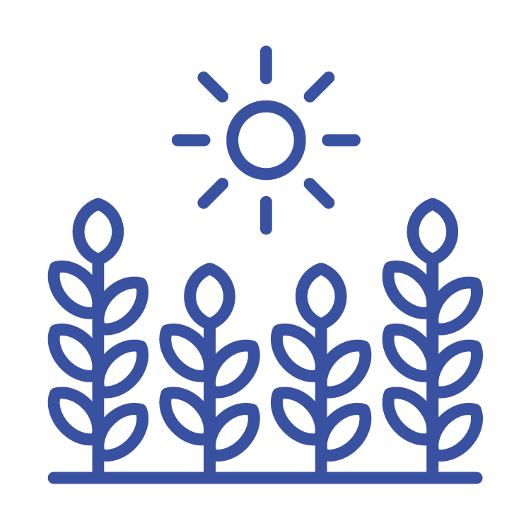 A4NH icons 2019_blue-03