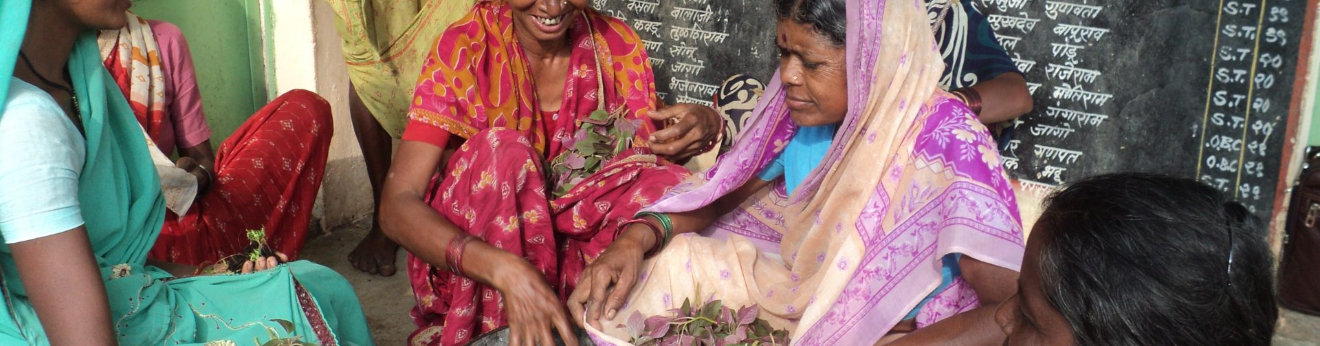 LANSA Receives A+ Rating in Program Review for Contributions to Nutrition Research in South Asia