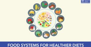 Video: Understanding Food Systems for Healthier Diets