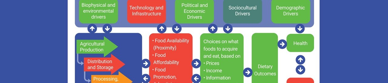Food Systems Transformation: Uneven Data, Gaps Hinder Cross-Country Learning and Comparison