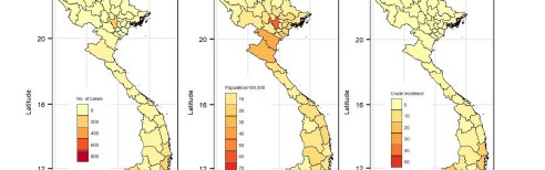 New Statistical Modeling Study Helps Forecast Dengue Fever Risks in Vietnam