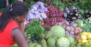 Online Course: Food Environments for Healthy, Sustainable Diets