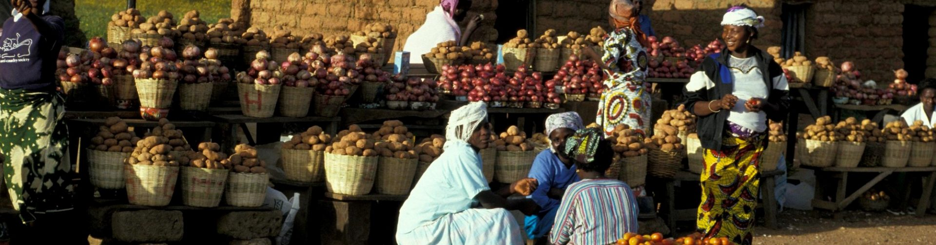 Paper: How will decisions made now affect Nigeria's future food system?