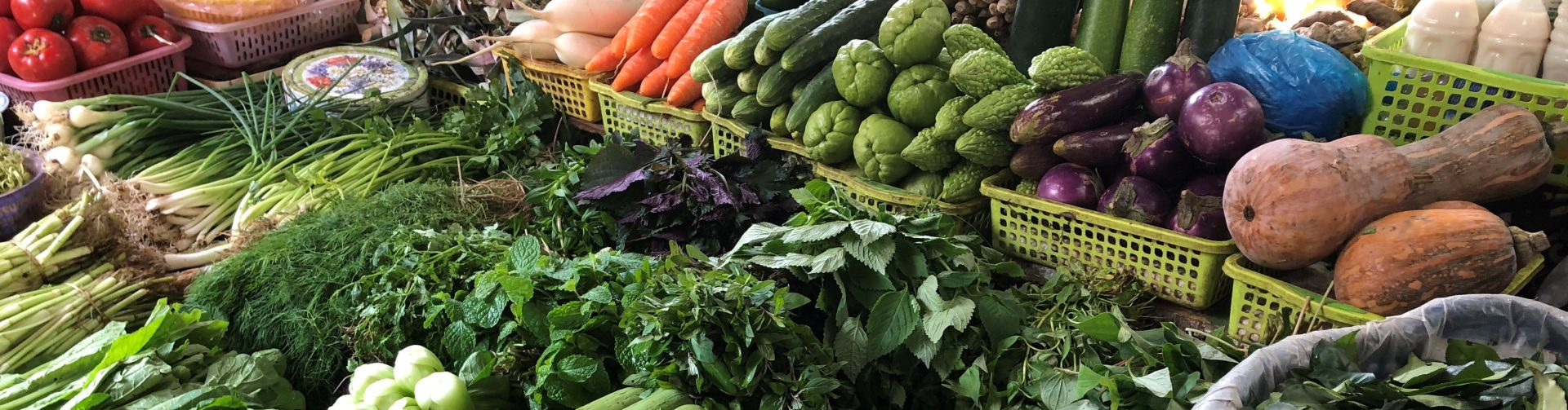 COVID-19 and Global Trade Implications for Food Systems and Healthy Diets