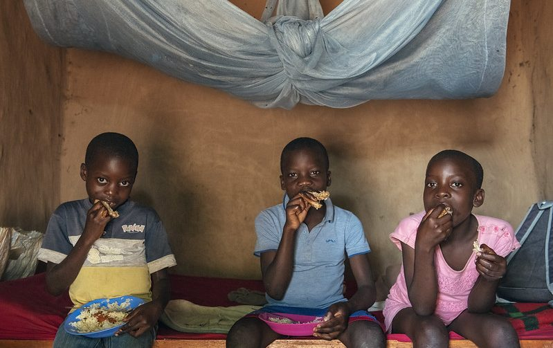 Catch-Up Growth Cannot Undo Damage from Undernutrition