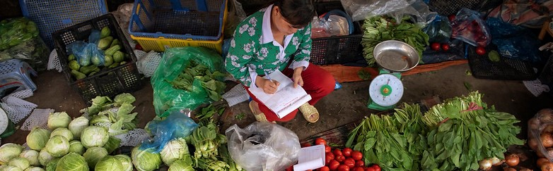 CGIAR COVID Hub Focus: Addressing Food Systems' Fragility and Building Back Better