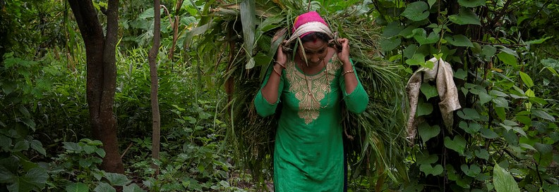 How Climate Change Intertwines with Inequity to Erode Nutrition