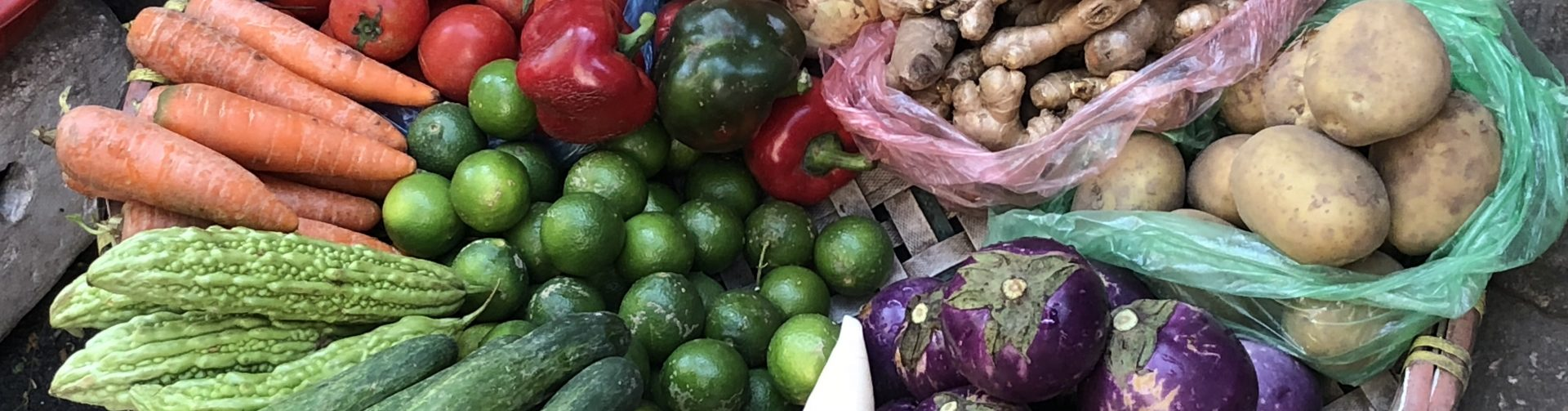 Sustainable, Healthy Diets for All Will Require a Food Systems Transformation